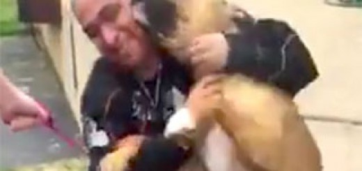 Heart-warming-moment-owner-is-reunited-with-his-pet-dog