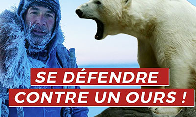 Mike Horn explique comment se defendre face a un ours polaire